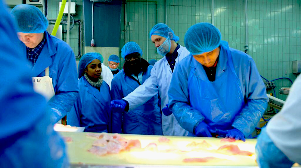 BSS Diploma  in  Fisheries Technology: Eligibility, Criteria, Scope, Benefits , Job Opportunities , Requirements