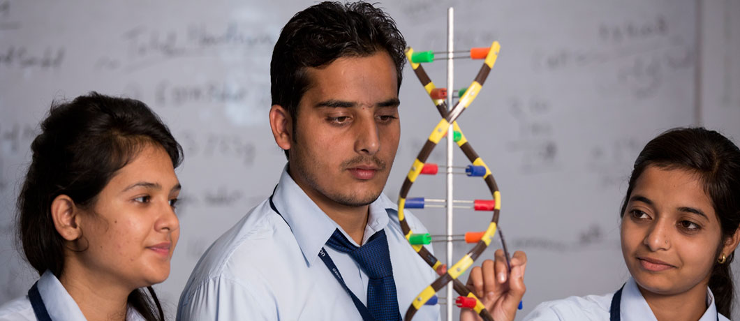 M.Sc. in Life Sciences