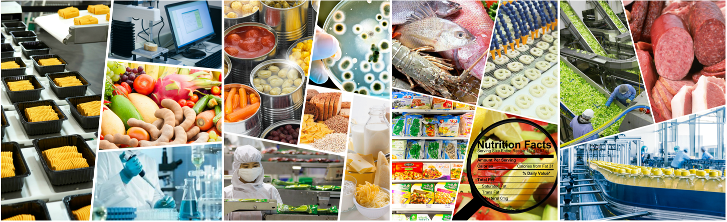 Know More About Food Science and Technology in India