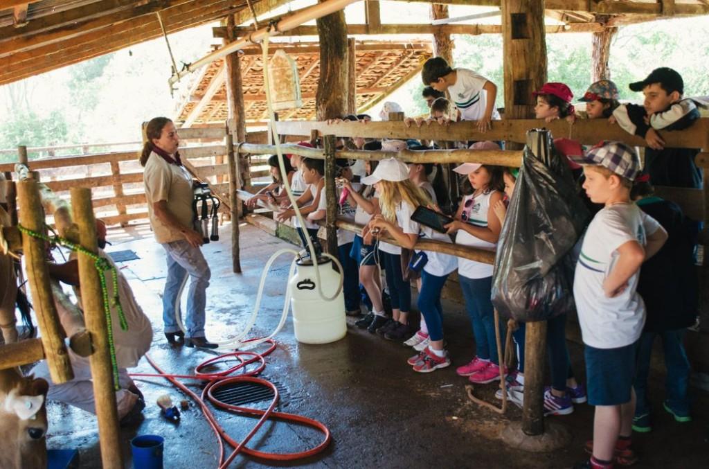 Turismo Pedagógico: Vivência no curral