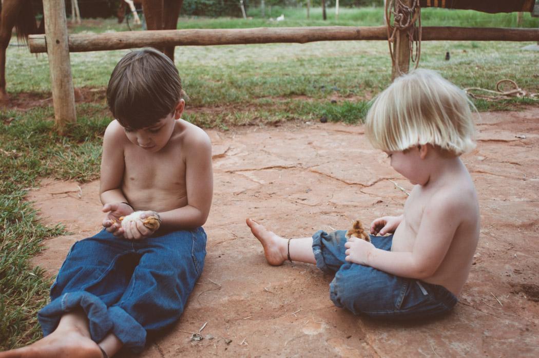 Ensaio fotográfico dos meus anjinhos brincando na roça