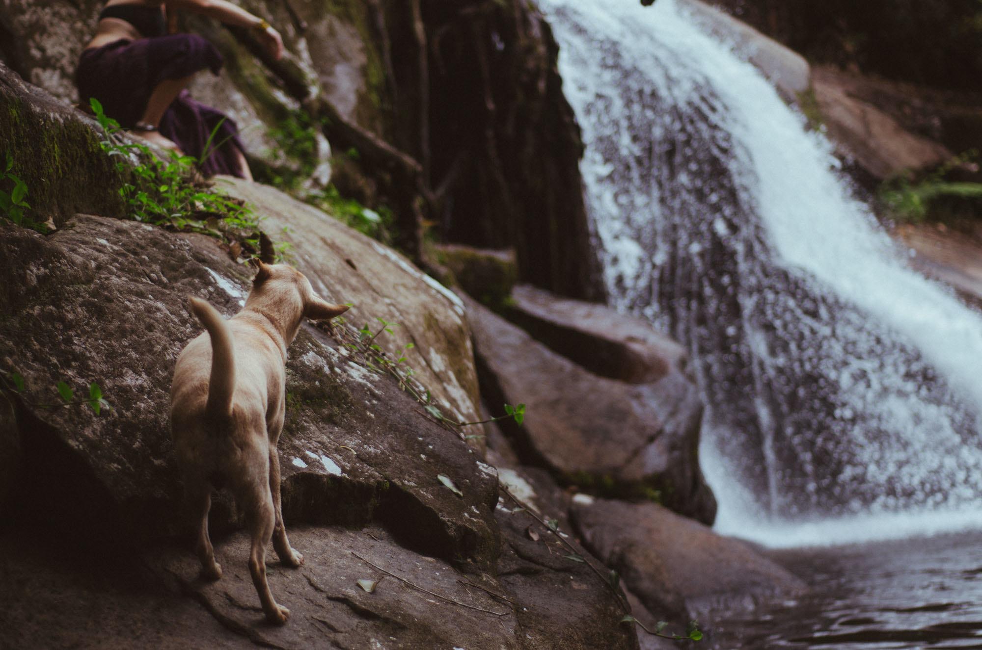 cachoeira-prumirim-ubatuba-set-16-45