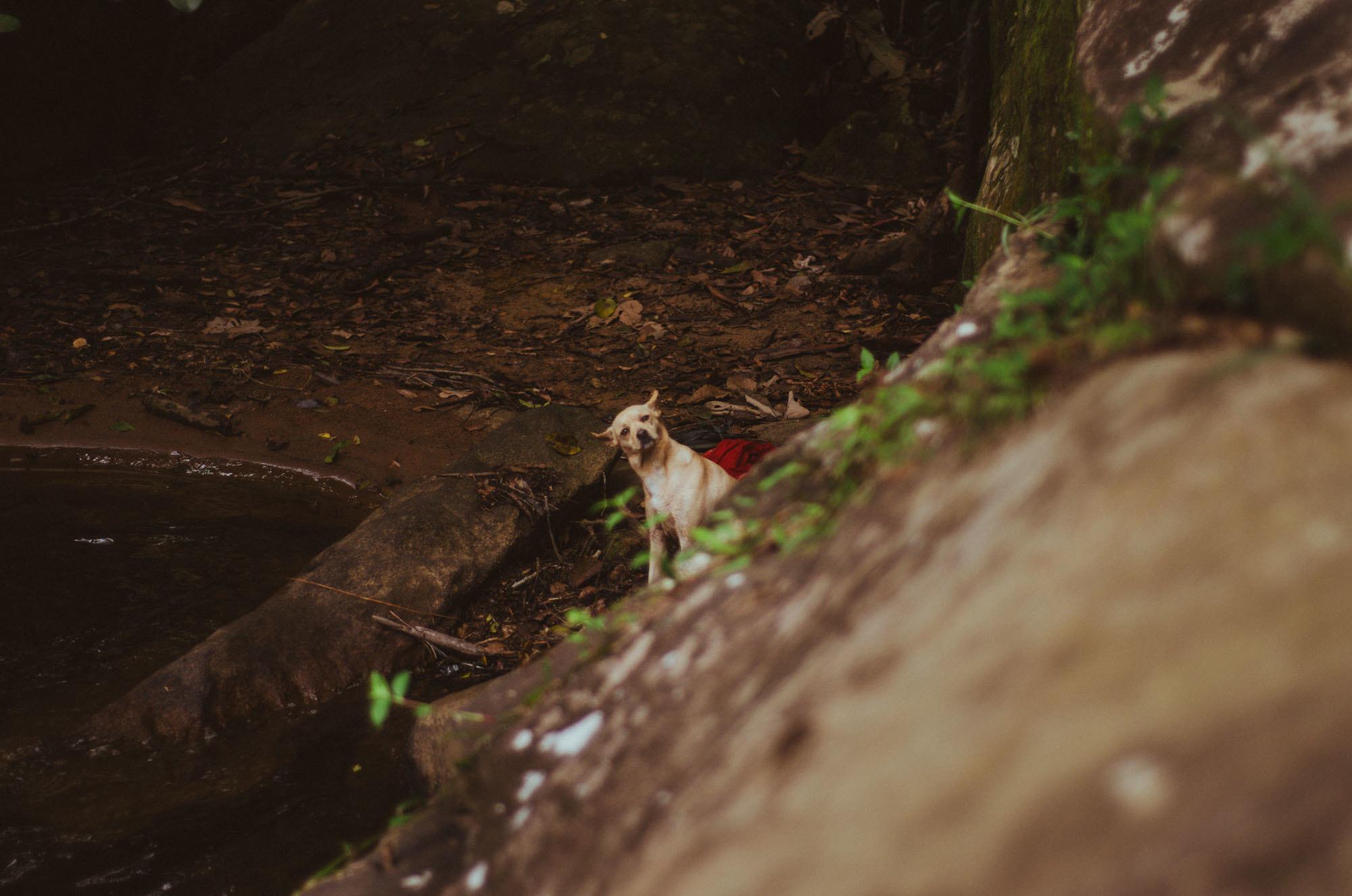 cachoeira-prumirim-ubatuba-set-16-65