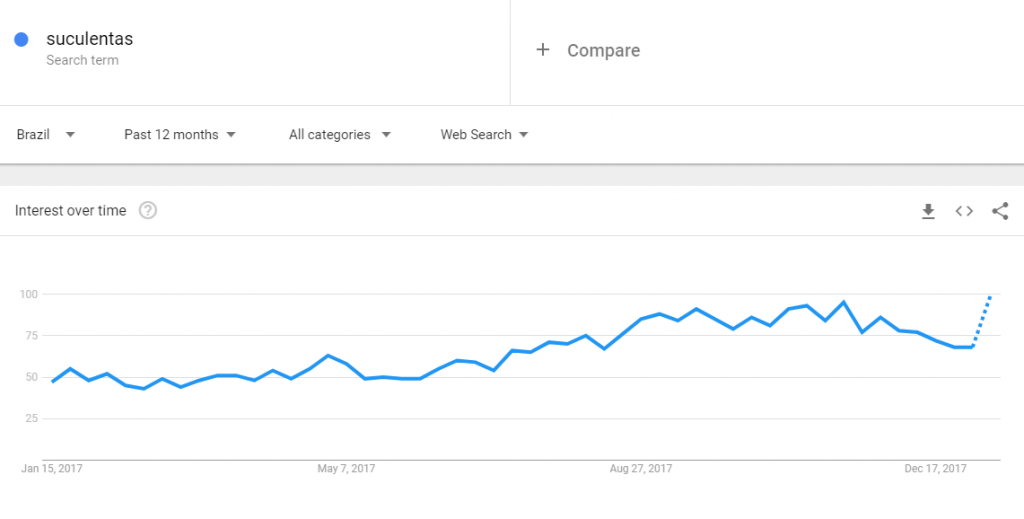 Google Trends - pesquisa sobre suculentas feita no Google Trends