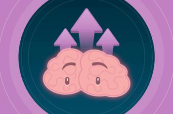 What is neuroeducation?
