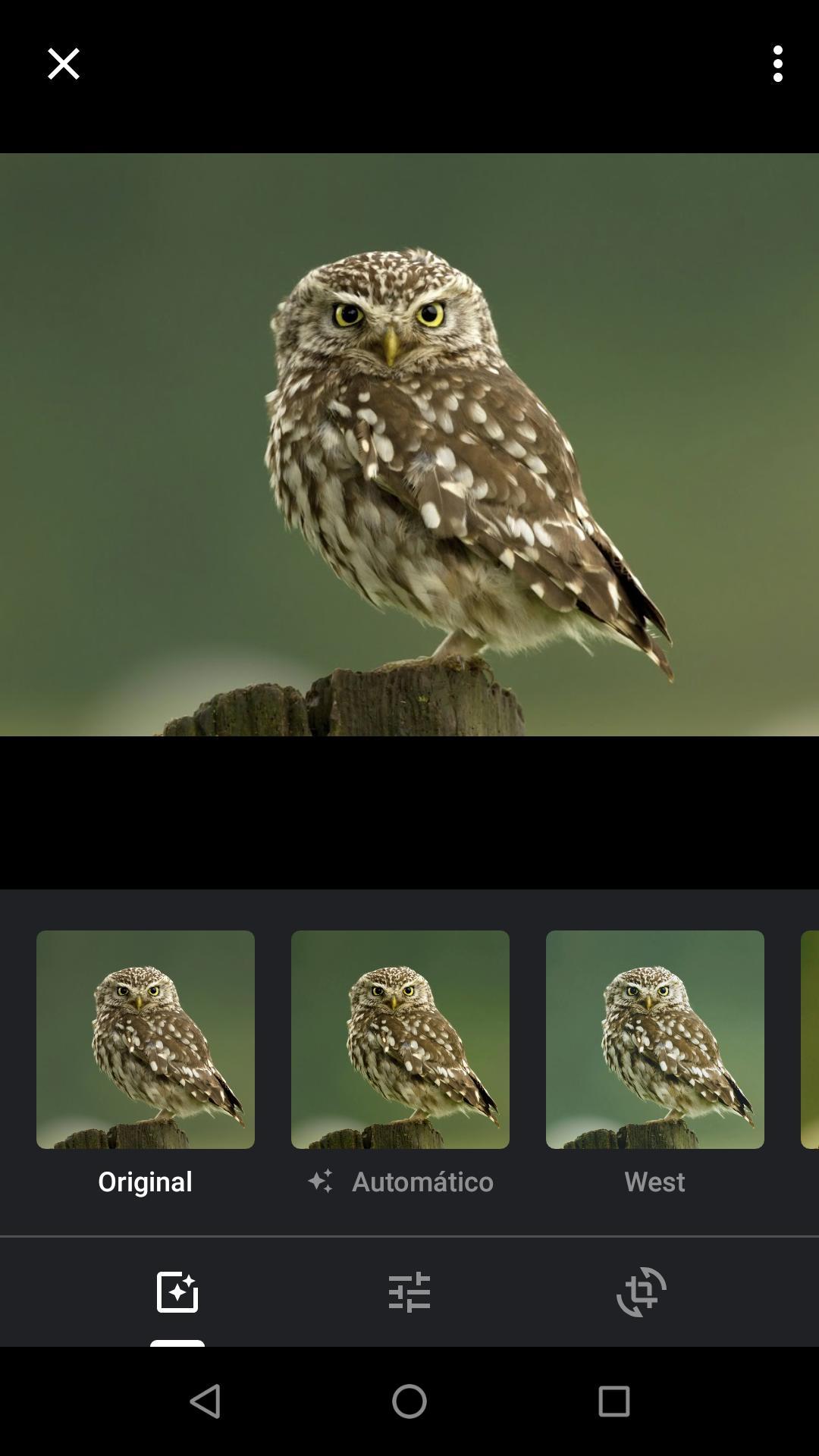 Google Fotos_imgaem com as ferramentas de adição do app e seleção de filtros
