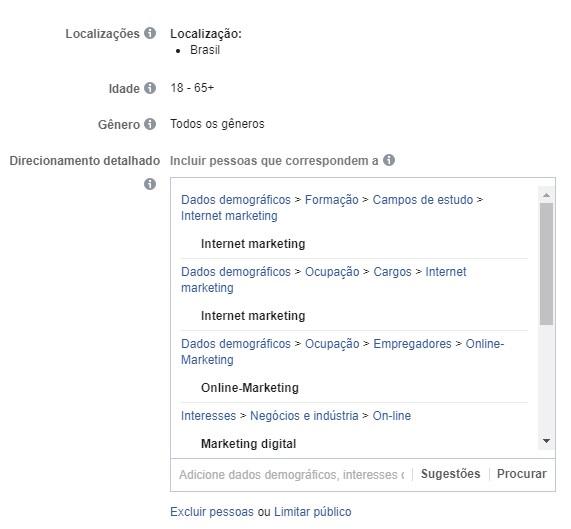 segmentar anúncios no facebook ads - criar público personalizado 8