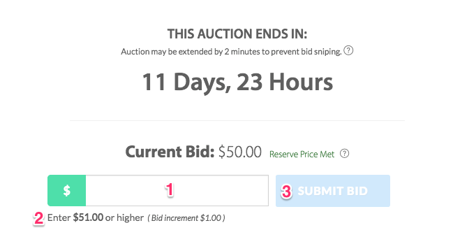 How To Bid Tutorial Municibid Help