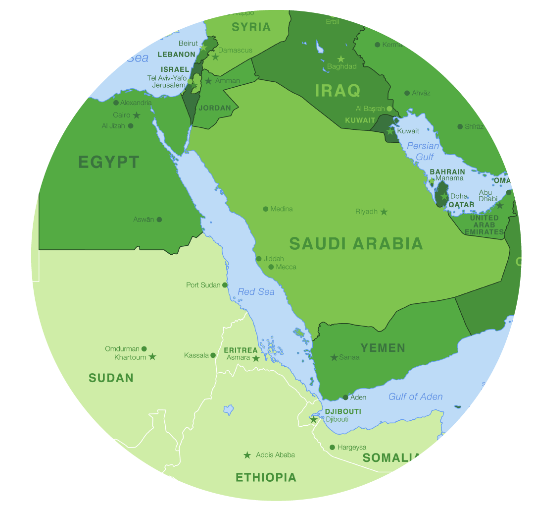 Marking Borders In A Sea Of Calm The SaudiEgyptian Maritime Deal - Vegetation map of egypt