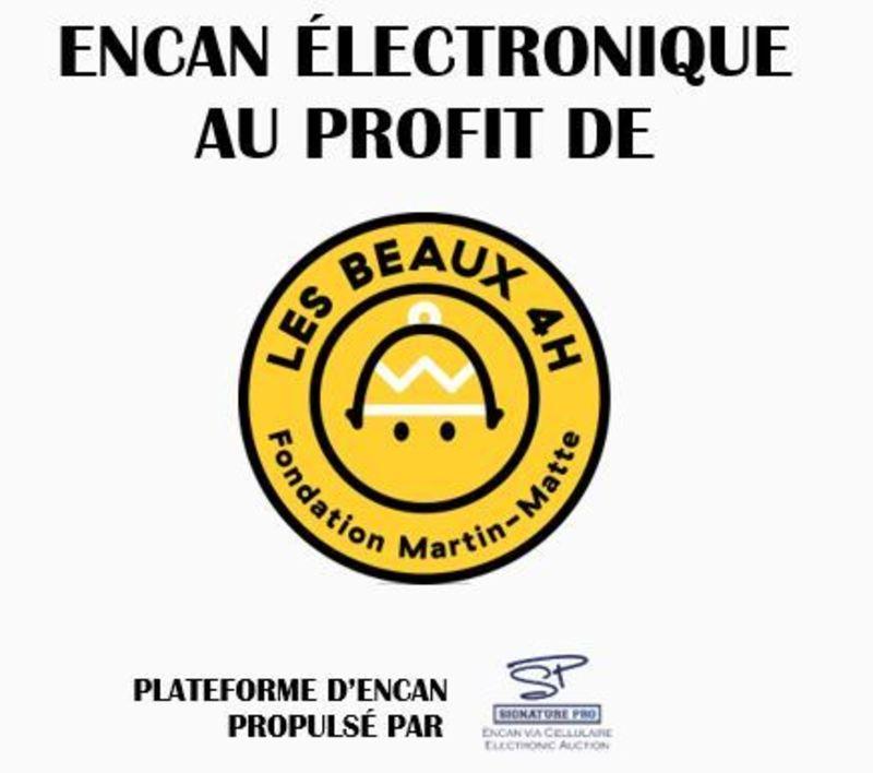 Encan Les Beaux 4 h Image