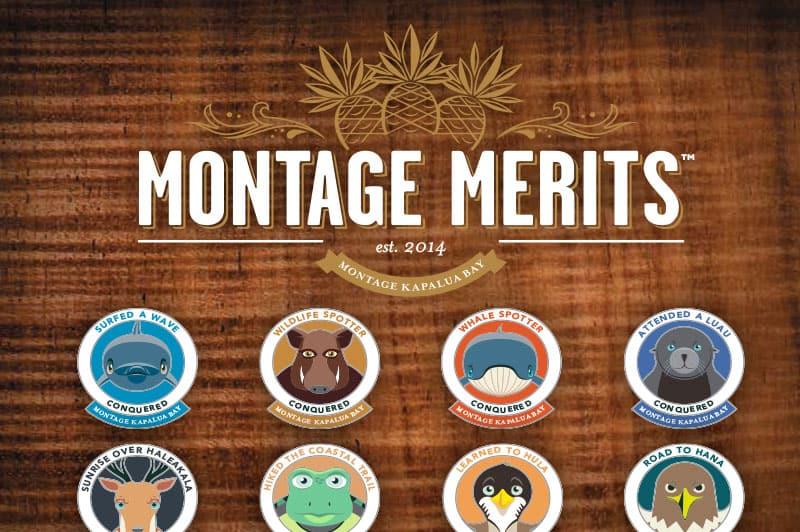 Montage Merit Badges