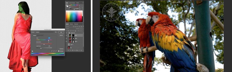 Week 4: Editing Photo Reference