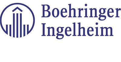 Bi partner logo original original