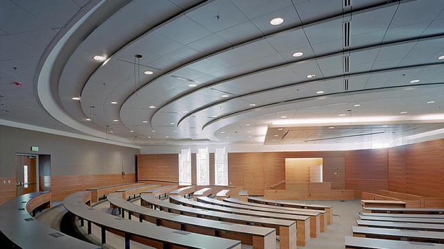 Acoustical Ceiling_07