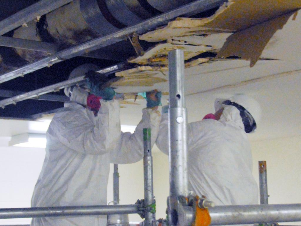 PAS Mold Remediation
