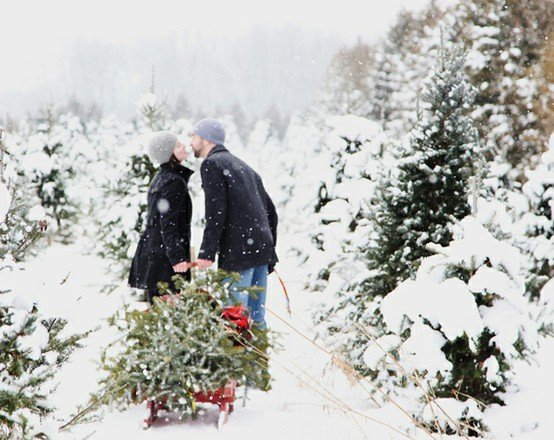Couples Christmas Cards Ideas.100 Photos To Inspire Your Holiday Cards Harvard Homemaker