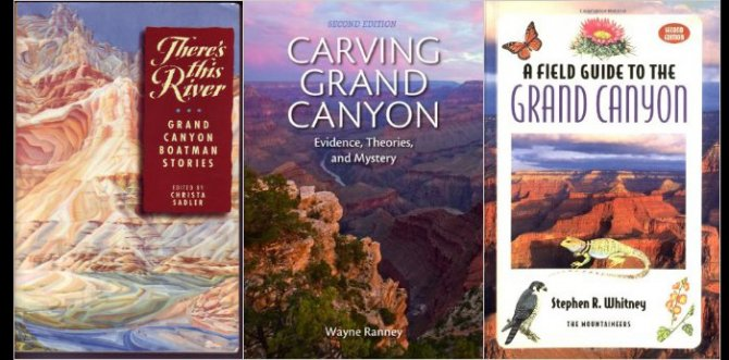5 Guidebooks For Your Grand Canyon Trip
