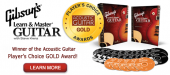 Gibson's Learn & Master Guitar Lessons, Piano, Drums DVD Instruction | Learn & Master Courses by Legacy Learning Systems