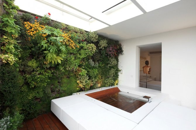 Checkout These Wonderful Vertical Gardens