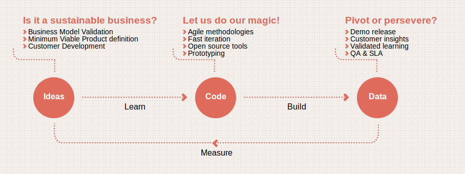 Leanbirds-follow-the-Lean-Startup-methodology