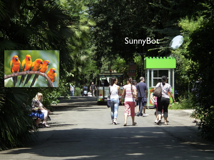 Sunnybot at the Zoo