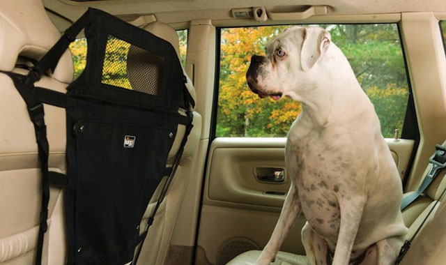Kurgo-Backseat-Pet-Barrier-the-gadget-flow