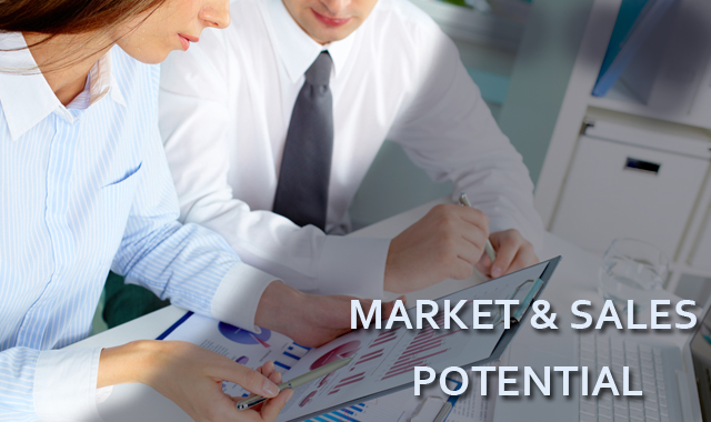 How to determine market and sales potential