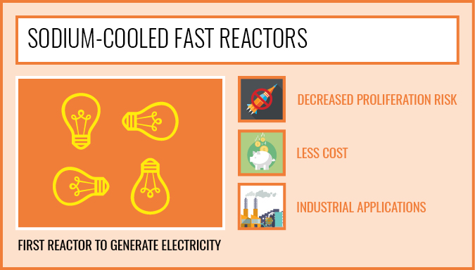 Sodium-Cooled Fast Reactors