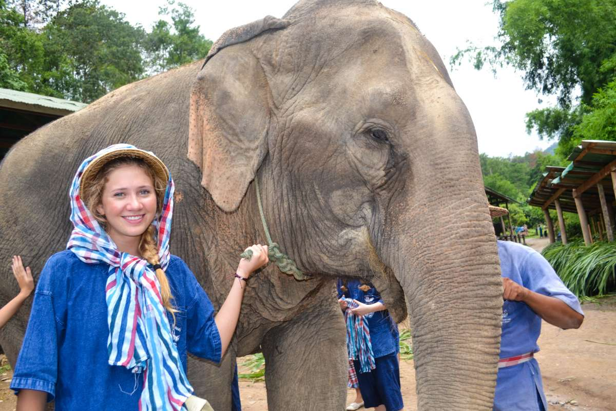 Teenage travelers with elephants during summer youth travel program in Thailand