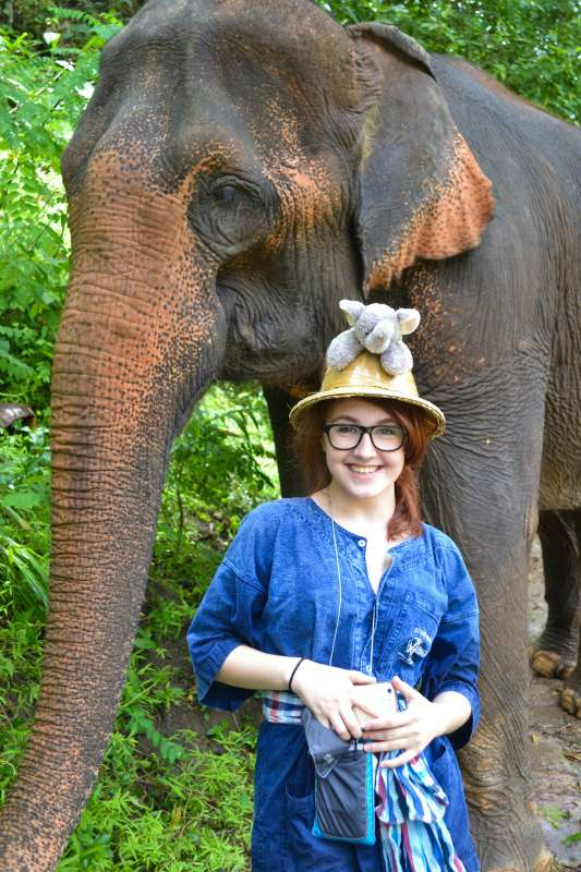 Teenage traveler volunteers with elephant during summer youth travel program in Thailand