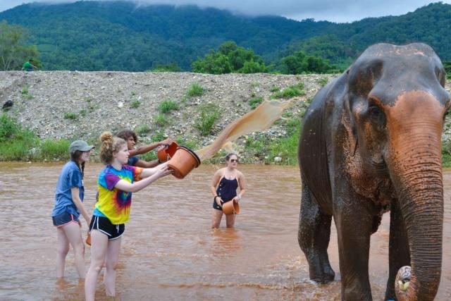 Teenage travelers wash elephants during summer youth travel program in Thailand