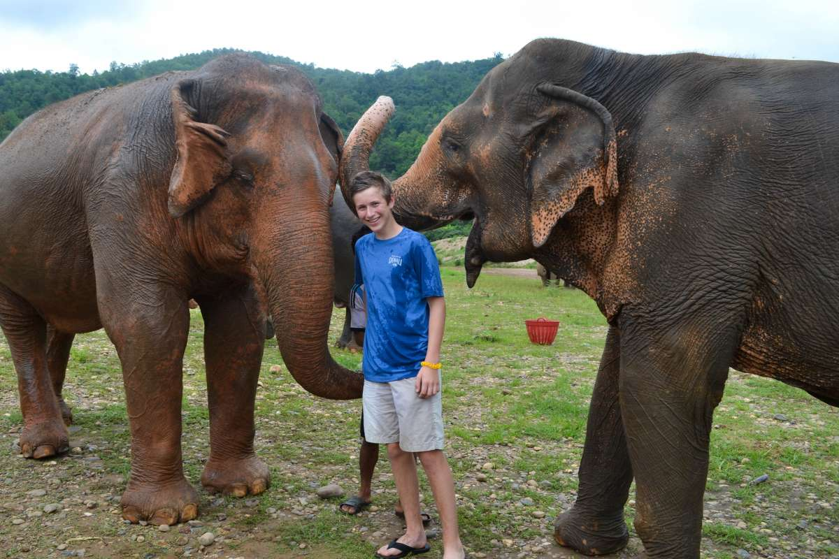High school student poses with elephants on their summer service program to Thailand.