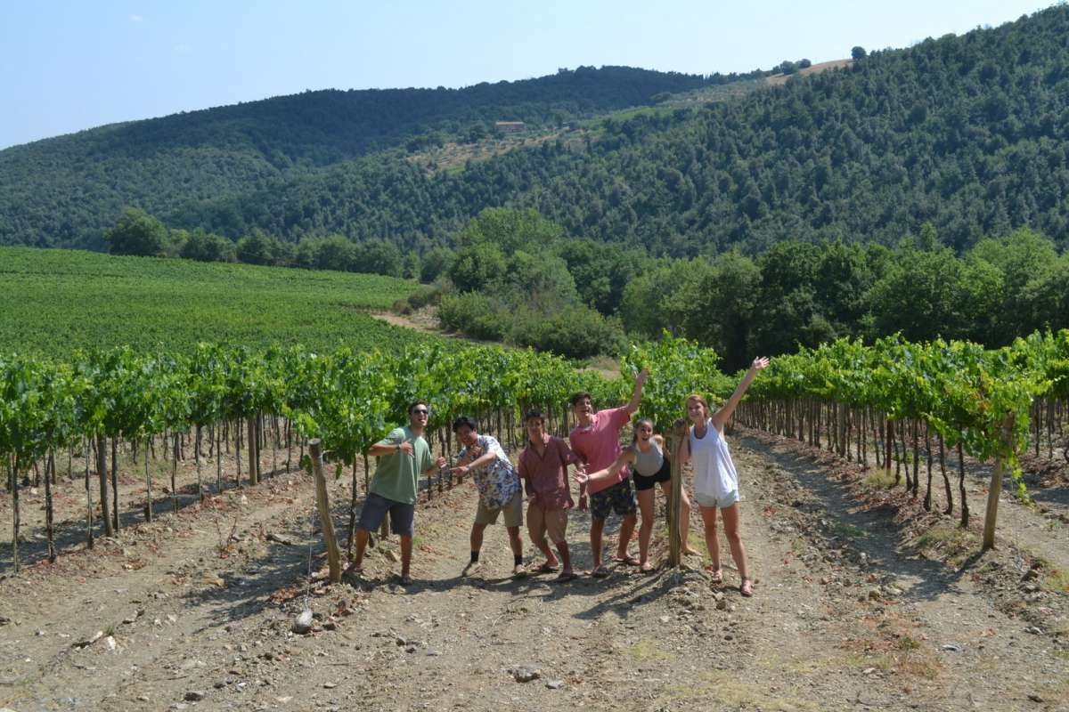 Teenage travelers walk through vineyard at Tuscany villa during summer youth travel program