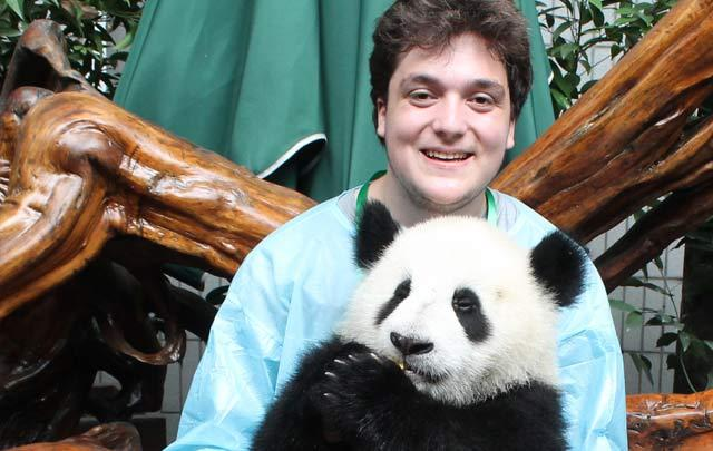 High school traveler helps at a panda rehabilitation center on their summer teen tour to China.