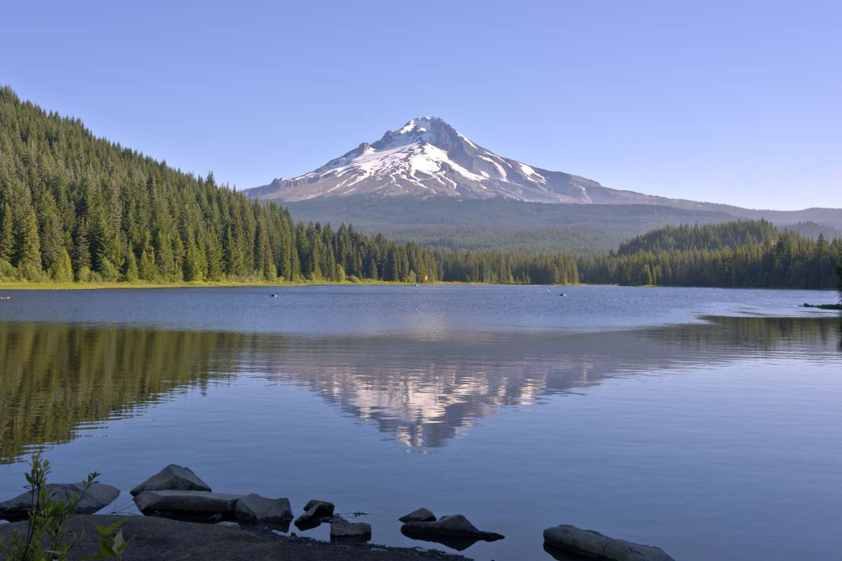trillium_USA West Coast Adventure