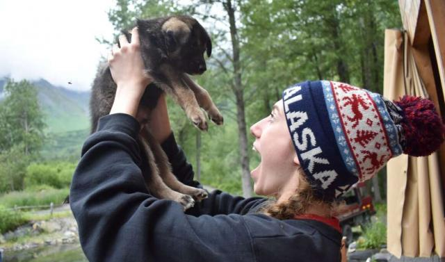 Teen traveler with Iditarod puppy on Alaska summer youth program