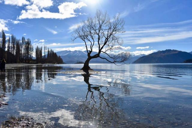 View of Lake Wanaka in New Zealand on a teen travel tour.