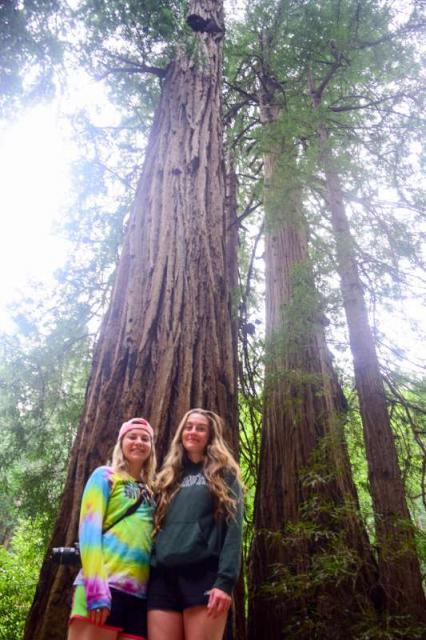 Teen Programs in California - Travel For Teens