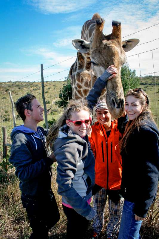 Group of teens meet a giraffe on summer service and safari program in South Africa.