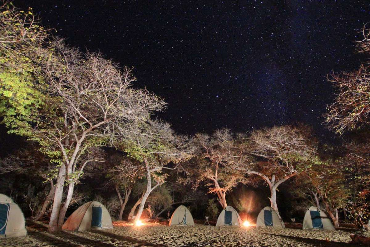 Students go camping in South Africa on service and safari tour for teens.
