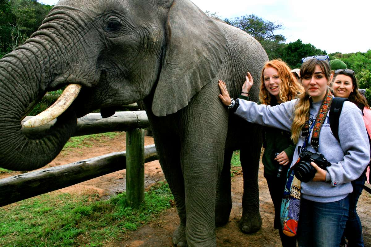 Teens meet an elephant at Addo Park in South Africa during safari and service summer tour.