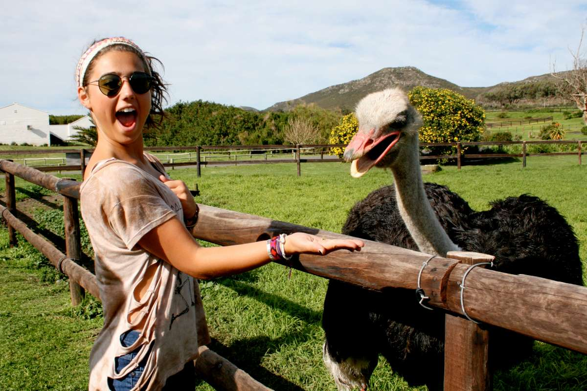 Teen encounters an ostrich during summer service and adventure program in South Africa.