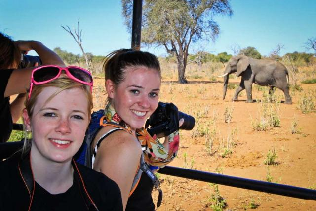 Students take photos of an elephant during safari in South Africa on summer teen travel program.
