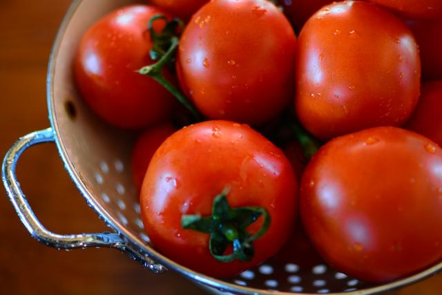 Fresh Italian tomatoes photographed by teenagers on summer teen travel photography program