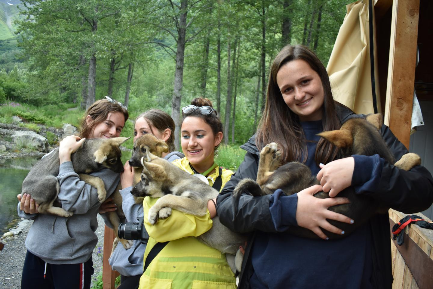Group of teens holds puppies on service and adventure program in Alaska.