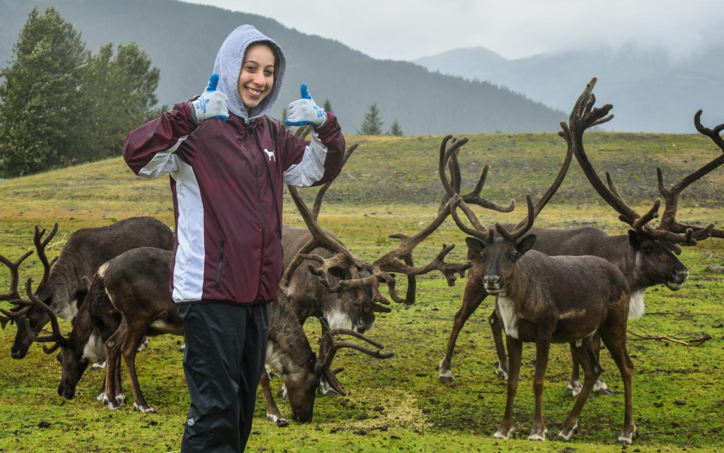 Teen poses with herd of reindeer on summer adventure tour of Alaska.