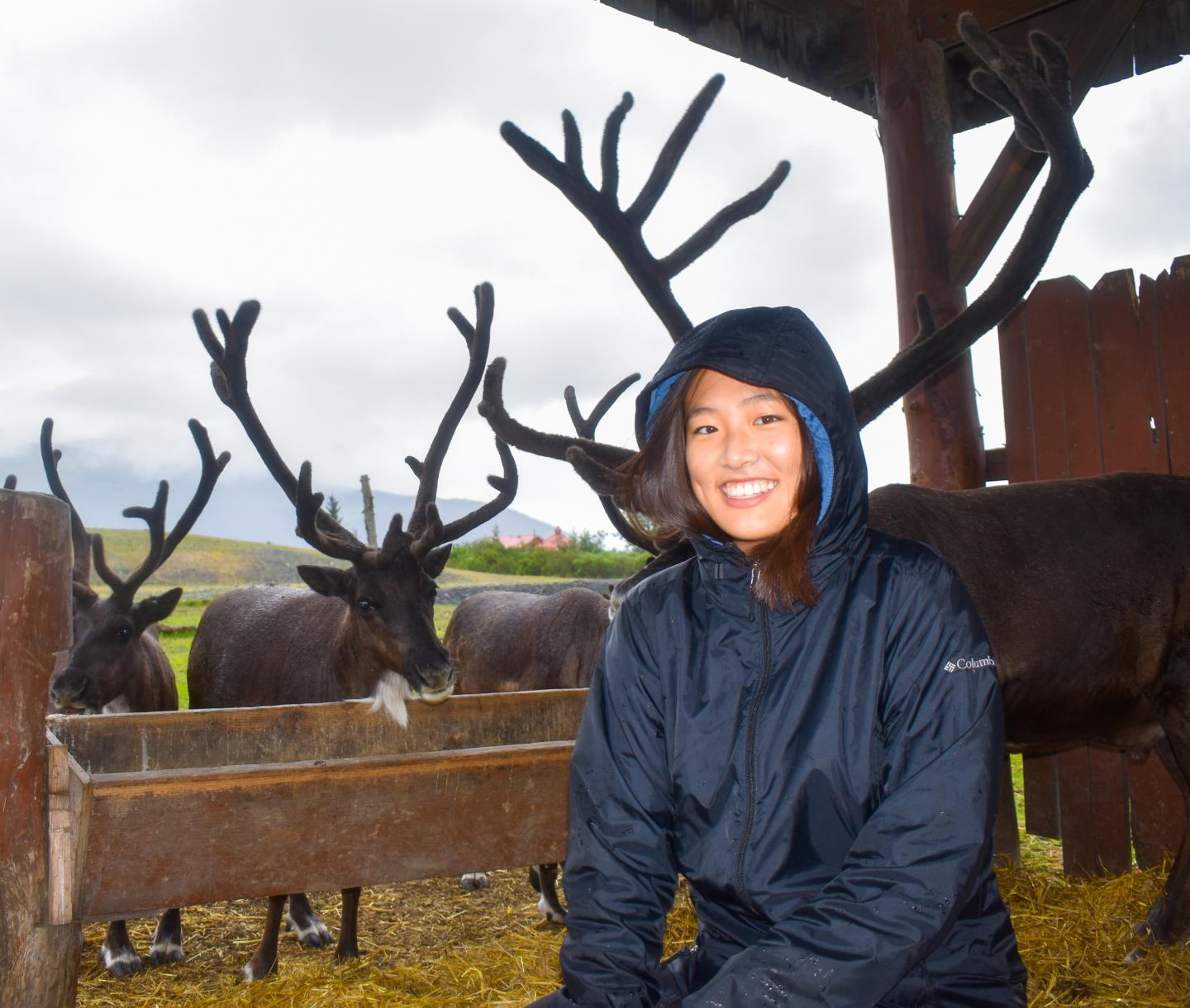 Teen sees reindeer on summer travel and adventure program in Alaska.