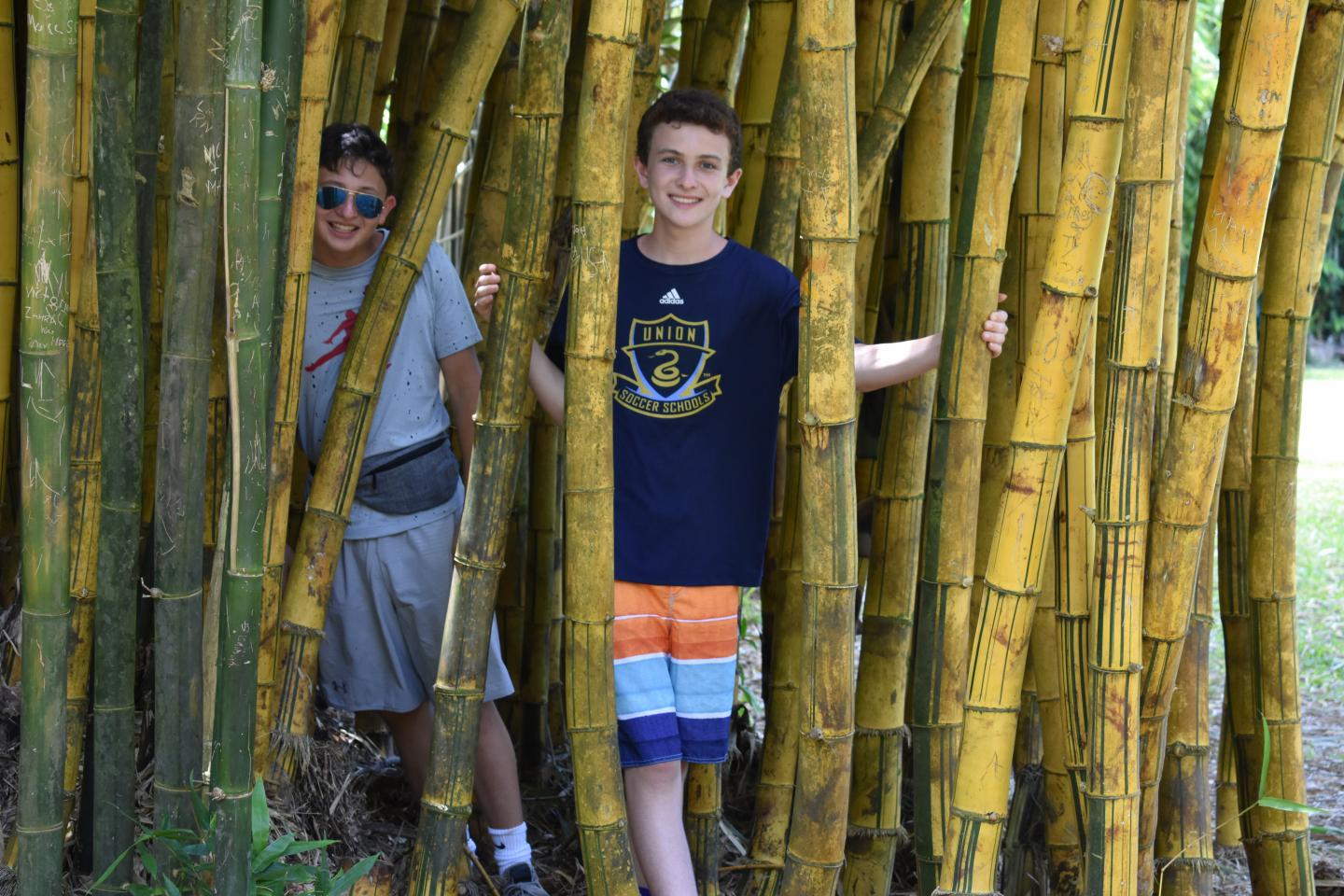 Teenage boys post in a bamboo forest on their student tour of Hawaii.