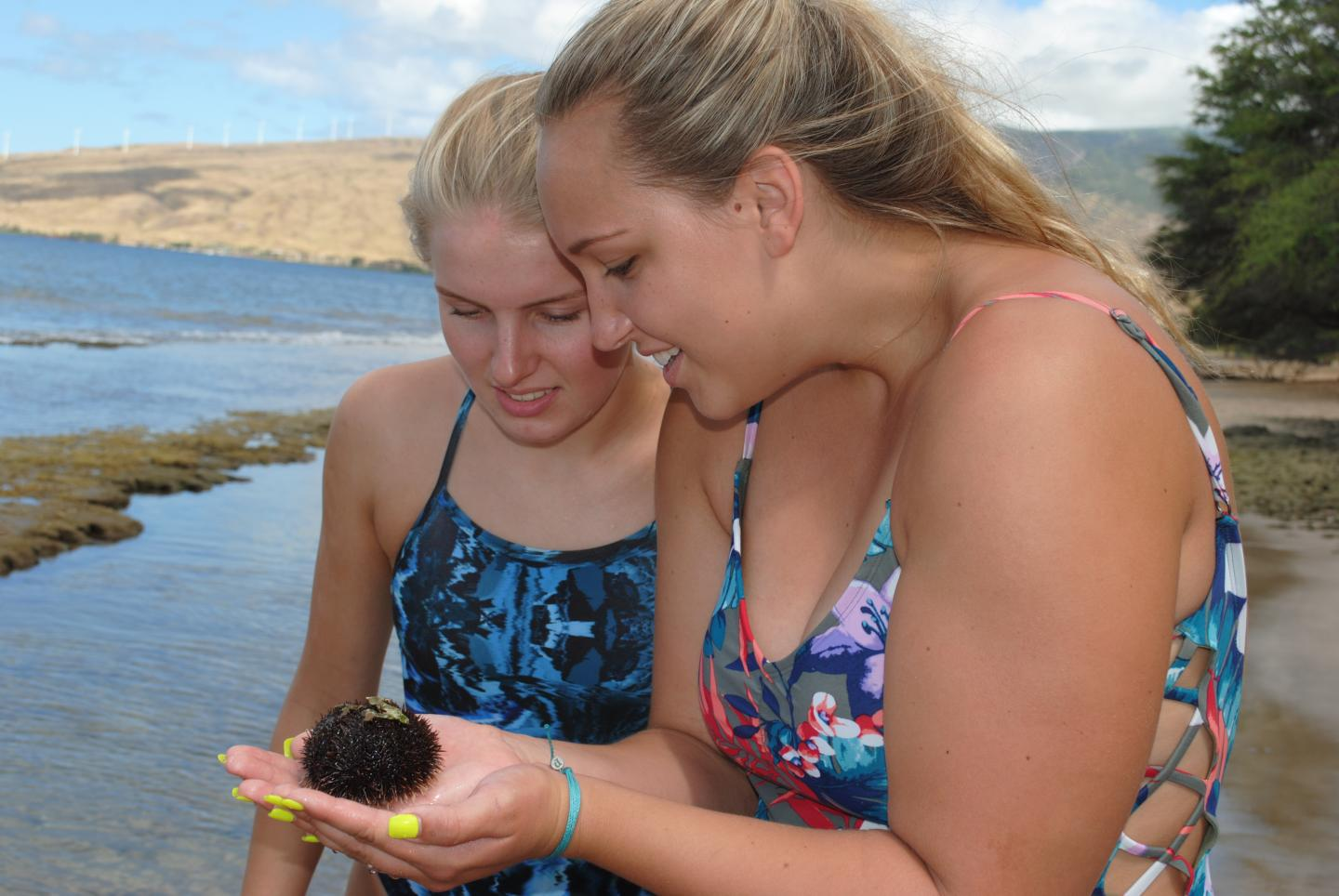 Teens admire a sea urchin on their summer tour program in North America.