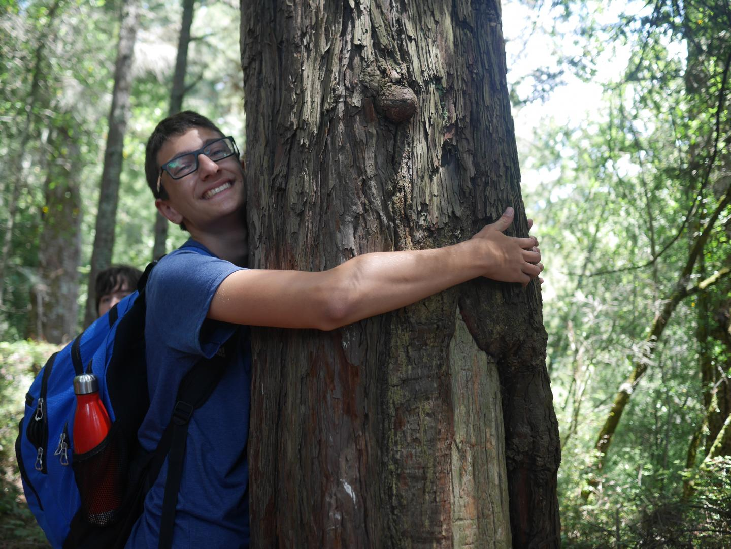 A teen hugs a tree during their summer adventure program in North America.